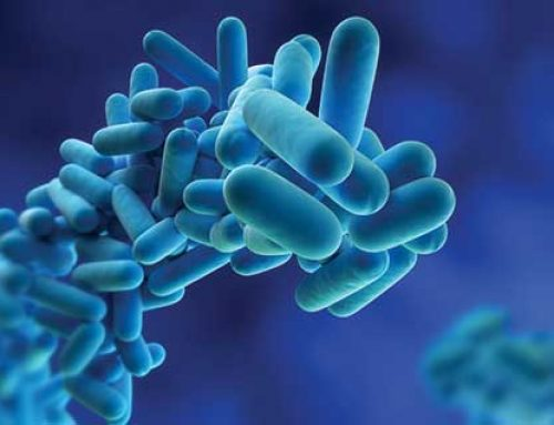 The Indoor Air Quality and Microbiology Experts.